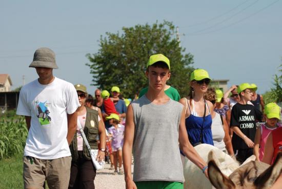 DSC_00390049 Green Day 2009